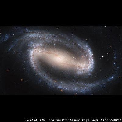 エヌダヌス座 棒渦巻銀河 NGC1300.jpg