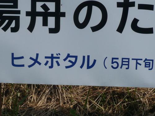 デジカメ菊池渓谷 009.JPG