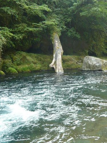 デジカメ菊池渓谷 051.JPG