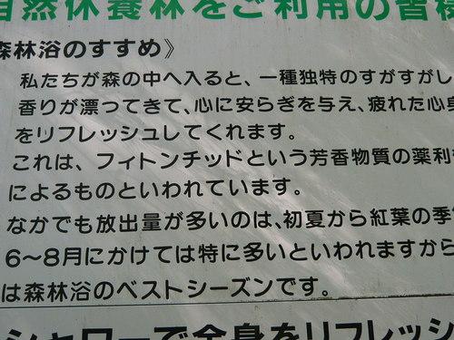 デジカメ菊池渓谷 074.JPG