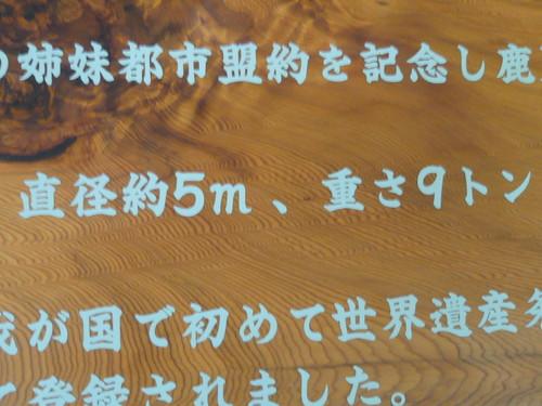 デジカメ8月 096.JPG