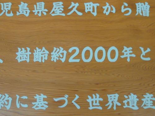 デジカメ8月 097.JPG