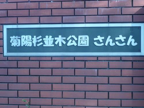 デジカメ8月 110.JPG