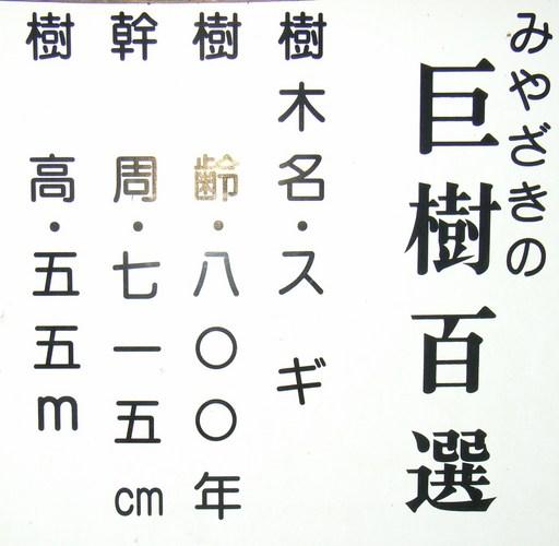 リコー9月 028.JPG