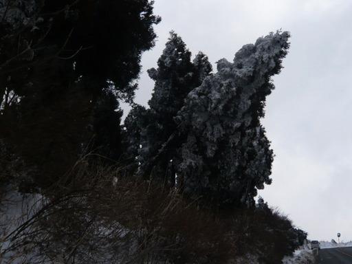 ルミックス有明海 阿蘇 052.JPG