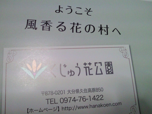 携帯久住花公園 012.JPG